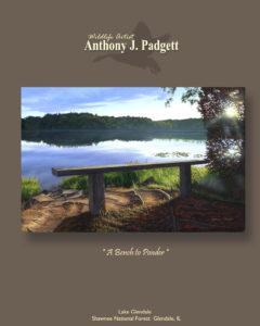 A Bench to Ponder- Lake glendale