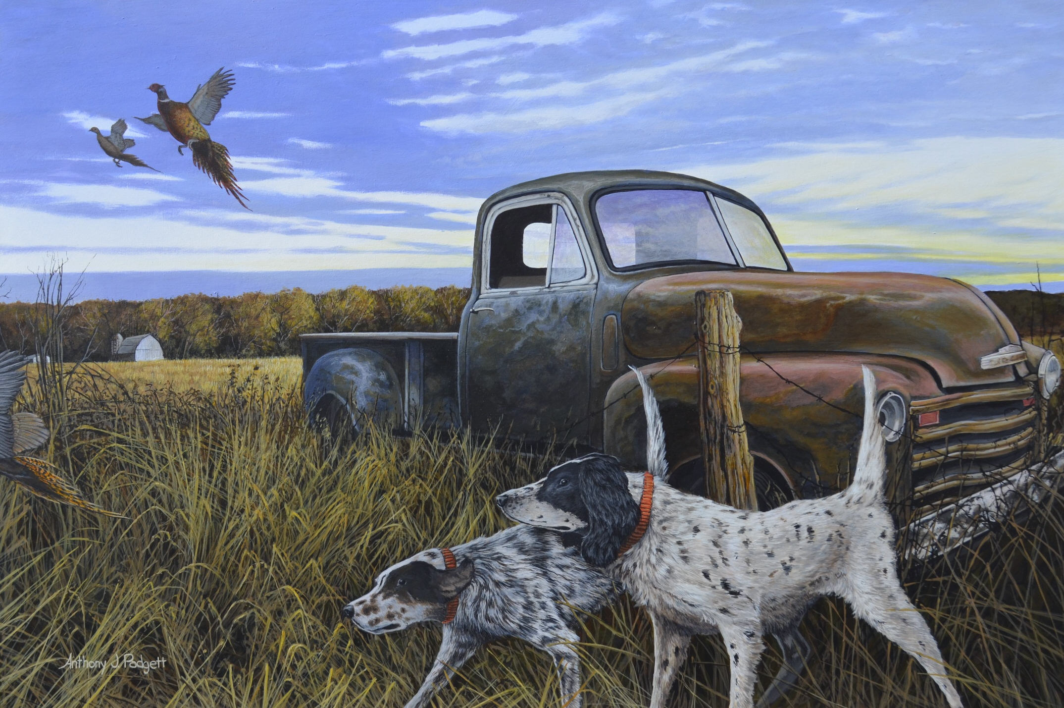 English Setters with Pheasants