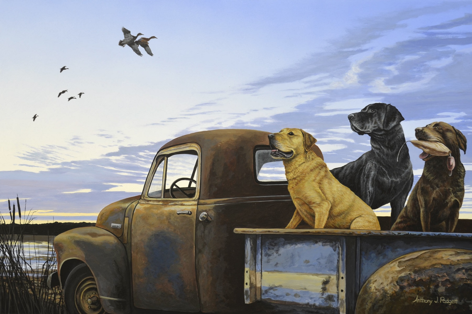 Full Load by Anthony J. Padgett