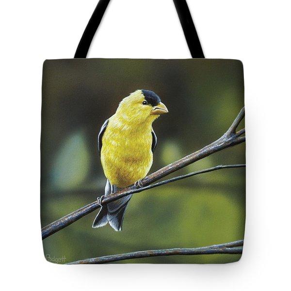 goldfinch-anthony-j-padgett